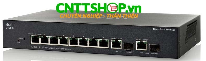 Switch cisco SG300-10
